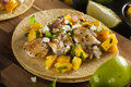Homemade baja fish tacos with mango salsa and chips Royalty Free Stock Images