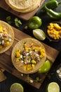 Homemade baja fish tacos with mango salsa and chips Stock Photos