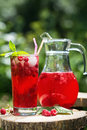 Homemade berry juice in a glass and jug with raspberry redcurrant in summer garden Royalty Free Stock Photo