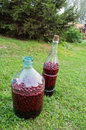 Homemade berry wine in large bottles Stock Photo