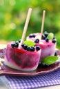 Homemade blueberry ice cream and yogurt with fresh fruits Stock Photography