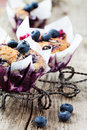 Homemade blueberry muffins paper cupcake holder Royalty Free Stock Photo