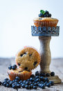 Homemade blueberry muffins in paper cupcake holder Stock Photo