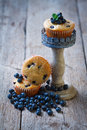 Homemade blueberry muffins in paper cupcake holder on rustic wooden decor Royalty Free Stock Photography
