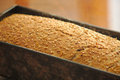 Homemade bread mold freshly from the oven Stock Image