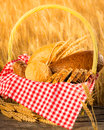 Homemade bread and wheat on the wooden table in autumn field Stock Images