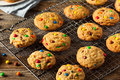 Homemade candy coated chocolate chip cookies ready to eat Royalty Free Stock Images