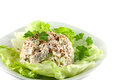 Homemade chicken salad on a bed of lettuce Royalty Free Stock Photos