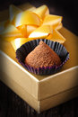 Homemade chocolate truffle paper case golden gift box Stock Photography
