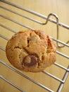 Homemade Cookies Stock Photos