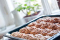 Homemade cookies on a baking tray Royalty Free Stock Image