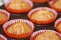 Homemade cupcakes Royalty Free Stock Photos