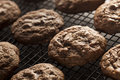 Homemade double chocolate chip cookies on a background Royalty Free Stock Images