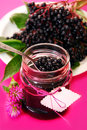 Homemade elderberry confiture Stock Photography