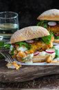 Homemade fish burger Royalty Free Stock Photo