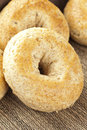 Homemade Fresh Whole Grain Bagel Stock Photography