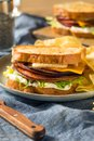 Homemade Fried Bologna Sandwich