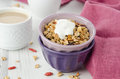 Homemade granola with goji berries and yogurt Stock Photo