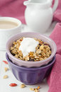 Homemade granola with goji berries and yogurt in a bowl close up Royalty Free Stock Photo