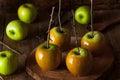 Homemade Green Caramel Apples Royalty Free Stock Photo