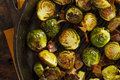Homemade grilled brussel sprouts with fresh bacon Stock Images