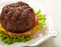 Homemade grilled hamburger on plate see my other works in portfolio Stock Images