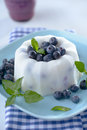 Homemade ice cream with blueberry Royalty Free Stock Photography