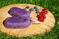 Homemade ice cream pops with different berries red currant blueberry strawberry and blackberry Stock Photos