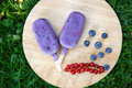 Homemade ice cream pops with different berries red currant blueberry strawberry and blackberry Stock Image