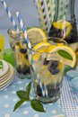 Homemade Lemonade Royalty Free Stock Images