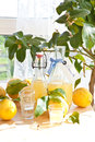 Homemade limoncello made from ripe organic lemons Stock Images