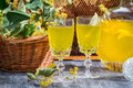 Homemade liqueur made ​​of honey and lime on old wooden table Stock Images