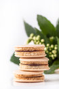 Homemade macaroons with flowers Royalty Free Stock Photo