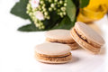 Homemade macaroons with flowers Royalty Free Stock Image