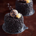 Homemade mini cake chocolate selective focus Royalty Free Stock Photos