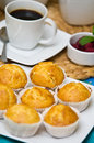 Homemade muffins still life image of tasty on a plate with coffee cup in the background Stock Photos
