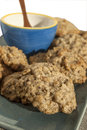 Homemade oatmeal cookies Stock Images