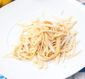 Homemade pasta some fresh on a plate Royalty Free Stock Image