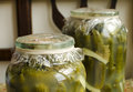 Homemade pickles in jars with drill horseradish and yellow mustard seed Stock Photography