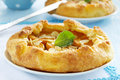 Homemade pie with apricots