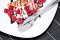 Homemade raspberry ice cream in a pan cake fresh made decorated with fresh raspberries and chocolate syrup Stock Image