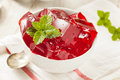 Homemade red cherry gelatin dessert in a bowl Stock Image