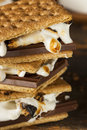 Homemade s more with chocolate and marshmallow on a graham cracker Royalty Free Stock Image