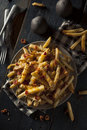 Homemade salty cheese french fries with bacon Royalty Free Stock Photography
