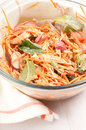 Homemade shredded carrot and chicken salad with radish Royalty Free Stock Photo