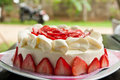 Homemade strawberry cake with cream Royalty Free Stock Photo