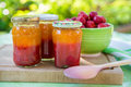 Homemade strawberry jam in different jars and fresh ripe strawbe apricot strawberries summer Stock Photography