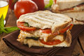 Homemade tomato and mozzarella panini with basil Royalty Free Stock Image
