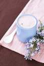 Homemade yogurt in a ceramic bowl on a pink tablecloth white spoon and a sprig of lilac with berries Stock Images