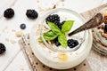 Homemade yogurt with muesli amd berries Royalty Free Stock Photo